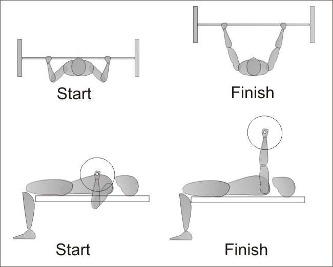 Bench Press Form Images